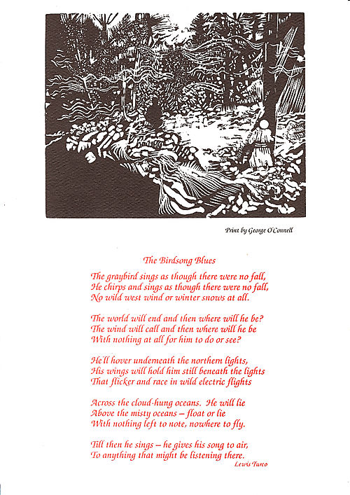 The Birdsong Blues, image and text