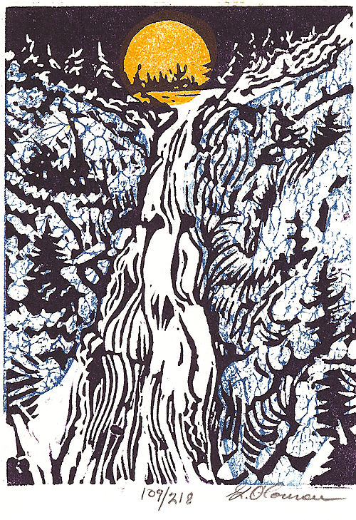 The Winter's Falls, image